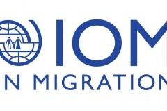IOM_Vis_Logo_Blue