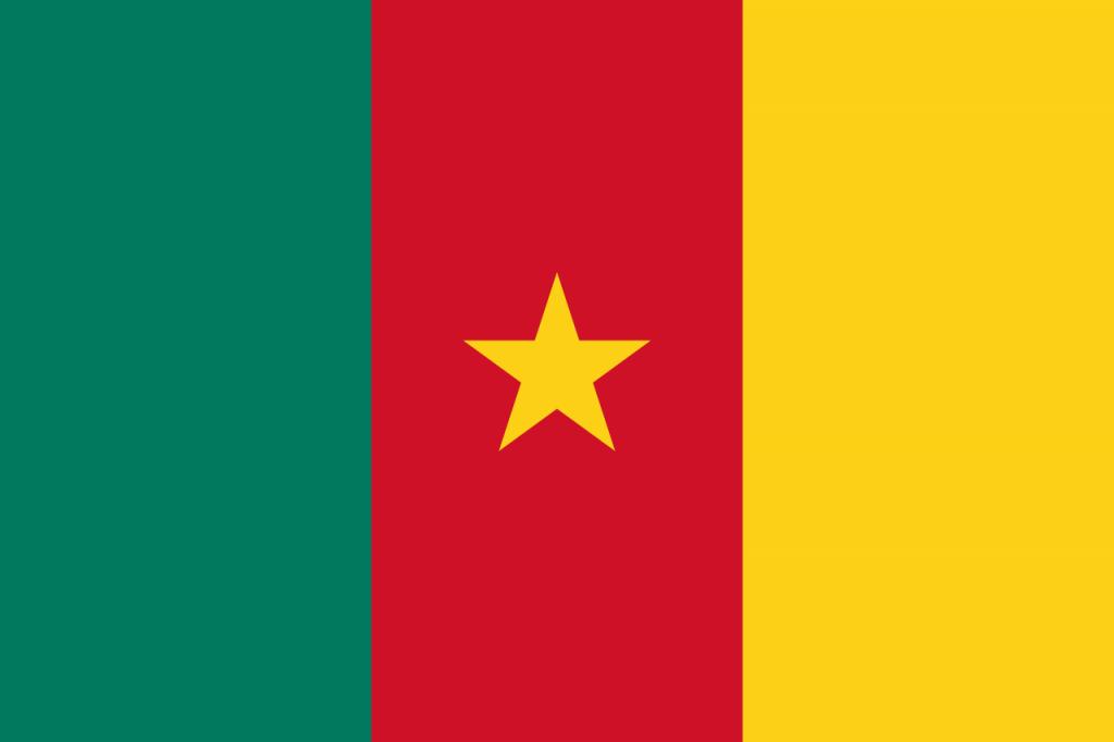 Знаме Камерун